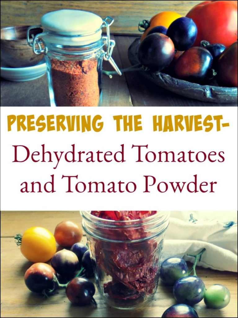 Preserving the Harvest - Dehydrated Tomatoes and Tomato Powder
