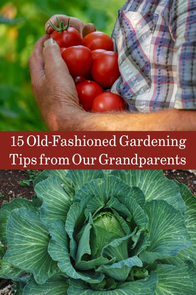 Old-Fashioned Gardening Tips from our Grandparents
