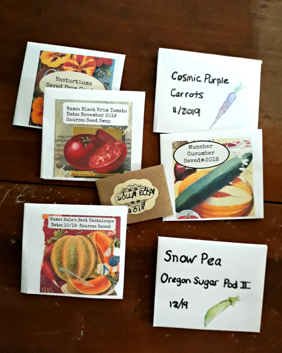 Handmade Folded Seed Packets