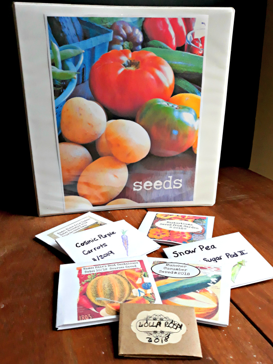 Seed Storage Binder and Handmade Seed Packets