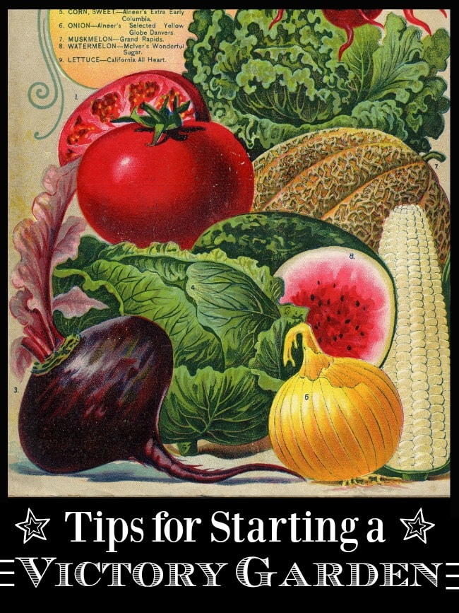 Tips for Starting a Modern Victory Garden