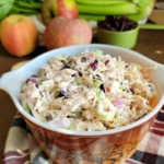 Bowl of Cranberry Apple Chicken Salad