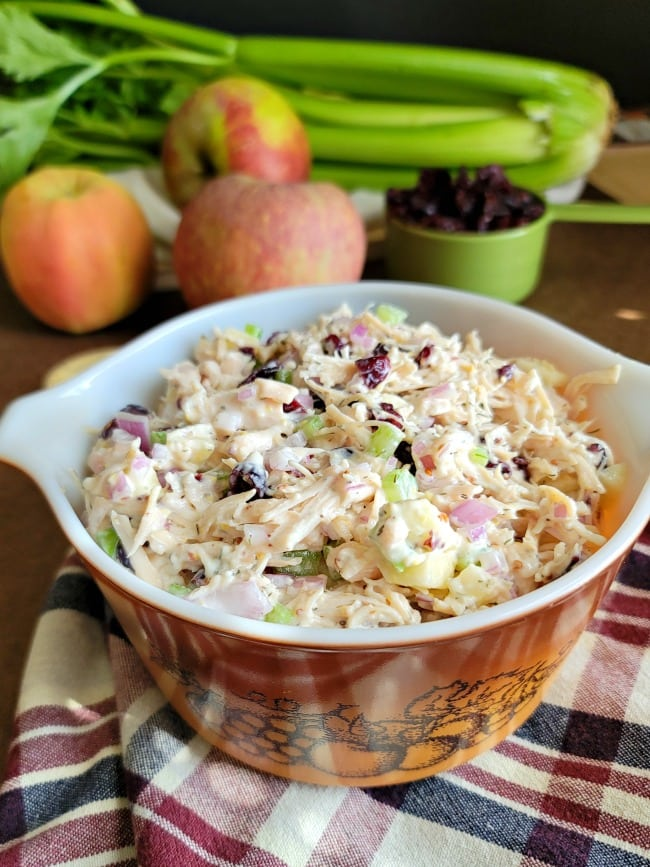 Bowl of Cranberry Apple Chicken Salad
